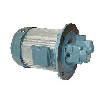 TOYOOKI HBPV Gear HBPV-KD4-VCD1-26-45A*-B pump