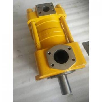SUMITOMO QT5143 Series Double Gear Pump QT5143-125-20F