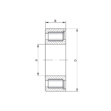 NCF2206 V ISO Cylindrical Roller Bearings