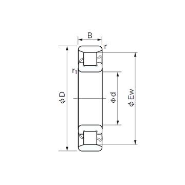 N 1008 NACHI Cylindrical Roller Bearings